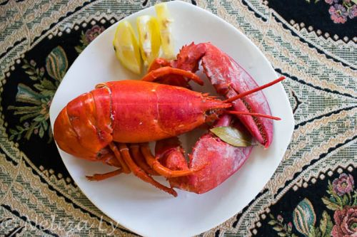 10. Instant Pot Whole Lobster - Instant Pot Seafood Recipes