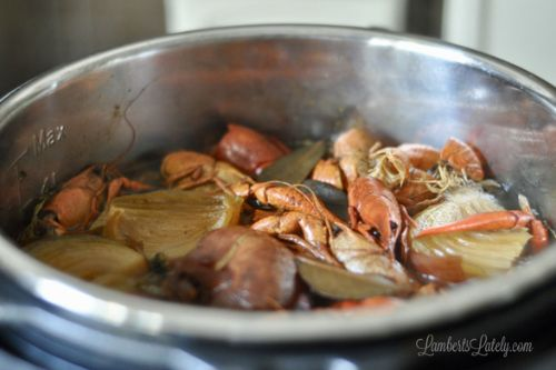 19. Crawfish Stock In the Instant Pot